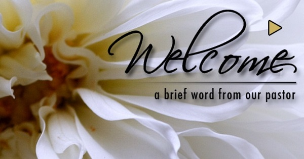 Welcome to Berean Bible Fellowship, the home of verse by verse Bible teaching.